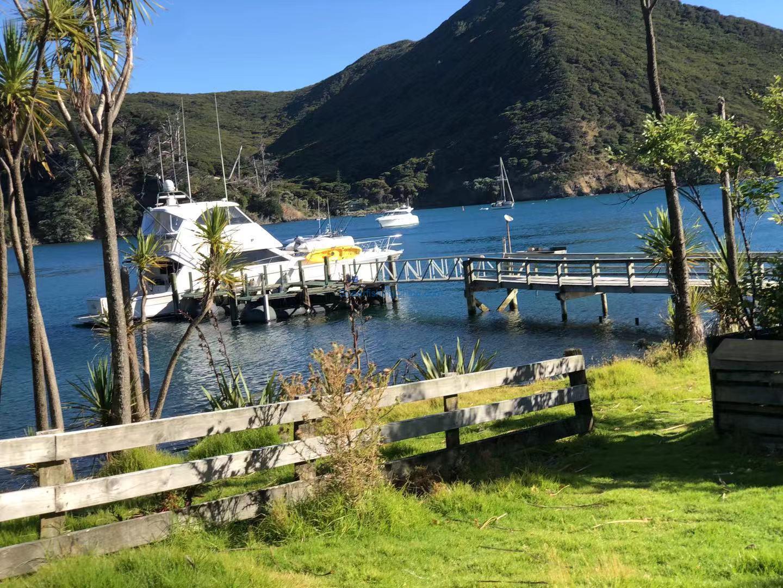 遊艇漁獵之旅~Great Barrier Island